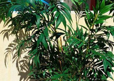 Planta artificial DESPUÉS de limpiar